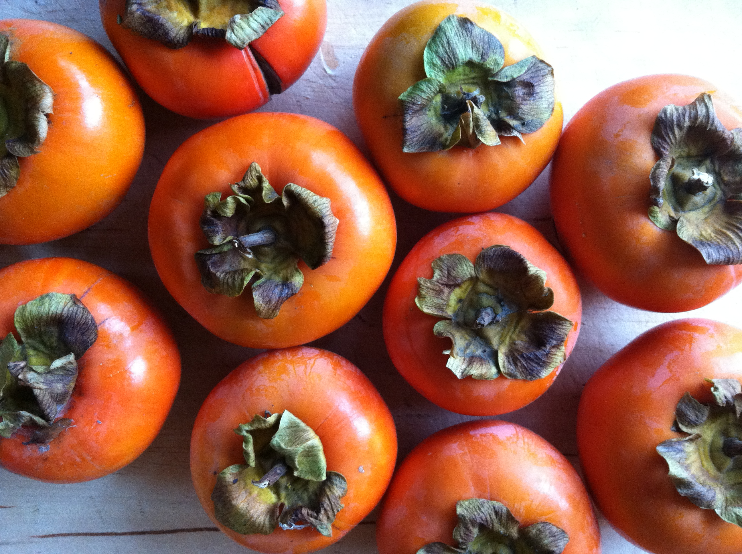 pick Fuyu persimmons from Fuyu Persimmons
